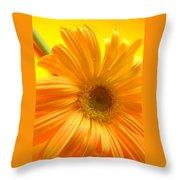 7321-007 Throw Pillow