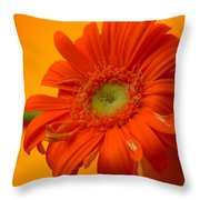 7335 Throw Pillow