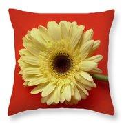 7709 Throw Pillow