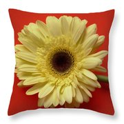 7711 Throw Pillow