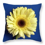 7721c Throw Pillow