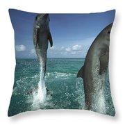 Bottlenose Dolphin Tursiops Truncatus Throw Pillow