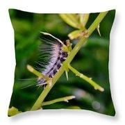 Hairy Caterpillar Throw Pillow