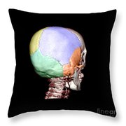 Human Skull Throw Pillow