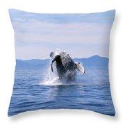 Humpback Whale Breaching Throw Pillow