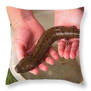 Mudpuppy Throw Pillow