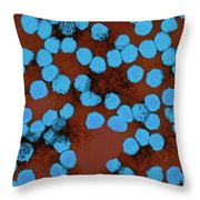 Yellow Fever Virus, Tem Throw Pillow by Science Source