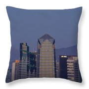 8008 Throw Pillow