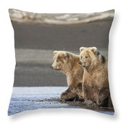 Grizzly Bear Ursus Arctos Horribilis Throw Pillow