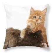 Kitten And Guinea Pig Throw Pillow