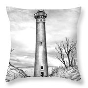 Little Point Sable Throw Pillow