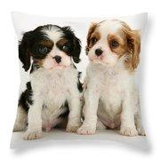 Puppies Throw Pillow by Jane Burton