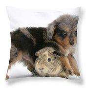 Puppy And Guinea Pig Throw Pillow