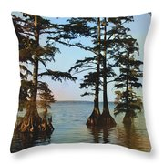 Reelfoot Lake Throw Pillow