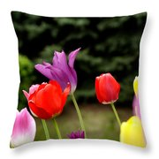 Tulip Garden University Of Pittsburgh  Throw Pillow