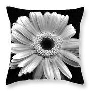90521a6 Throw Pillow