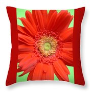 93573a1 Throw Pillow