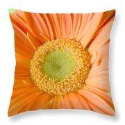 93721a1 Throw Pillow