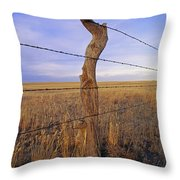 A Barbed Wire Fence Stretches Throw Pillow