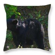 A Bear Cub Throw Pillow