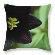 A Beautiful Fritillaria Camschatcensis Throw Pillow