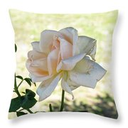 A Beautiful White And Light Pink Rose Along With A Bud Throw Pillow