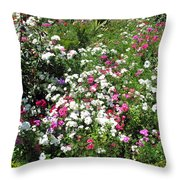 A Bed Of Beautiful Different Color Flowers Throw Pillow