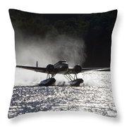 A Beechcraft D-18s Floatplane ,built Throw Pillow