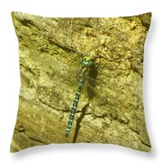 A Big Blue Dragonfly  Throw Pillow