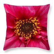A Big Pink Flower Throw Pillow
