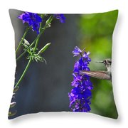 A Bird And A Bee Throw Pillow