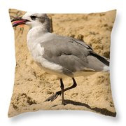 A Bird Of Many Colors Throw Pillow