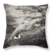 A Bird With A Large Wing Span Takes Throw Pillow