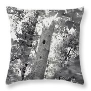 A Black And White View Of The Interior Throw Pillow