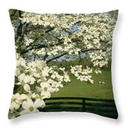 A Blossoming Dogwood Tree In Virginia Throw Pillow