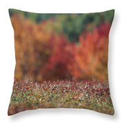 A Blueberry Patch Alongside Maines Throw Pillow