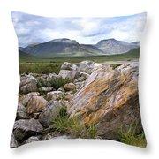 A Boulder Near Loch Garve Throw Pillow