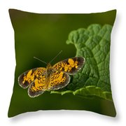 A Brief Moment Of Rest Throw Pillow