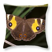A Brightly Colored Brown And Yellow Throw Pillow