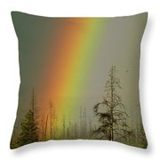 A Brilliantly Colored Rainbow Ends Throw Pillow