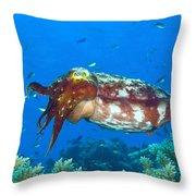 A Broadclub Cuttlefish, Kimbe Bay Throw Pillow
