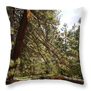 A Broken Tree Throw Pillow