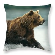 A Brown Bear Rushing Through Water Throw Pillow
