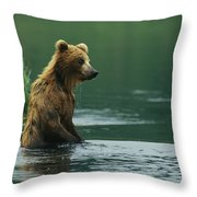 A Brown Bear Standing In Water Hunting Throw Pillow