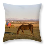 A Brown Horse Grazing In A Field In Throw Pillow by Michael Interisano