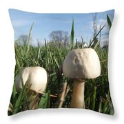 A Bugs View Throw Pillow