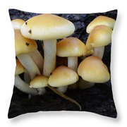 A Bunch Of Fung Guys Throw Pillow