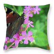 A Butterfly On The Pink Flower 2 Throw Pillow