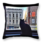 A Cat's View Throw Pillow by Joan Meyland