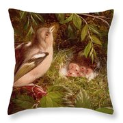 A Chaffinch At Its Nest Throw Pillow